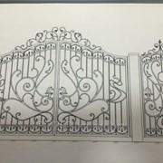 Ворота. фото