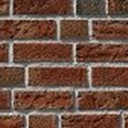 Клинкерный кирпич Celina Klinker (Германия), фасадный клинкерный кирпич, облицовочный кирпич, клинкерный облицовочный кирпич фото