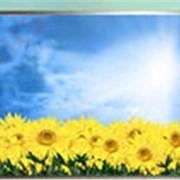 Инфракрасный обогреватель 1100мм х 750мм(окантовка белый пвх) фото