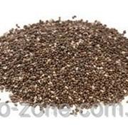 Семена Чиа 250г Для похудения. Парагвай (food-grade) фото