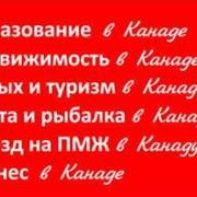 Услуги юристов, адвокатов по международному праву, Услуги адвоката при выезде в Канаду из Казахстана фото