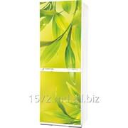 Холодильник Snaige RF 35SM-S10021 035 фото