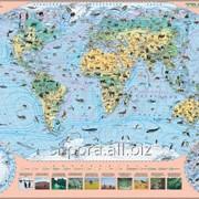 Карта тварин світу фото