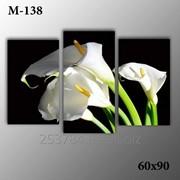 Картина модульная М-138, размер 60х90 фото