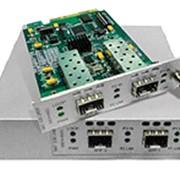 Одноканальный WDM-транспондер FlexGain WDM-1TP(3R) фото