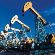 Сбор нефтепродуктов фото