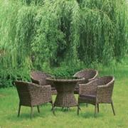 Комплект плетеной мебели из искусственного ротанга Сэм фото