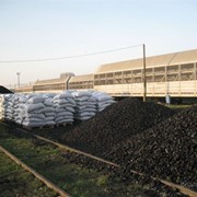 Услуги в покупке и хранении угля в городе Шахтерске. фото