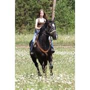 Детский конный лагерь фото
