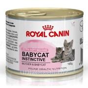 Консервы для котят Royal Canin Babycat Instinctive 0,085 кг фото