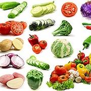 Оптовая продажа овощей Алматы фото