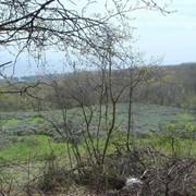 Продам Земельный участок с видом на море, площадью - 0,3000 га. в г. Алушта, с. Виноградное фото