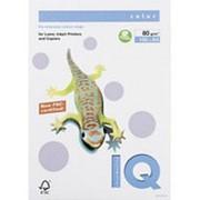 Цветная бумага IQ COLOR Пастель, 100л фото