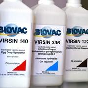 Инактивировааные вакцины BIOVAC фото