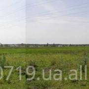 Участки в Буче, Киевская область фото