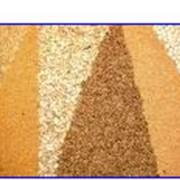 Экспорт. Экспорт зерна. фото
