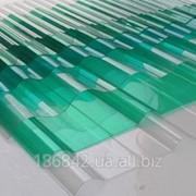 Профилированный поликарбонат Borrex волна фото