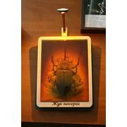 Сувенир голографический с подсветкой настольный Жук-носорог фото