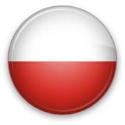 Переводчик польского языка фото
