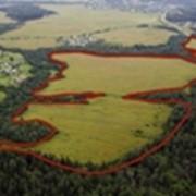 Продажа земельных участков на Новорижском шоссе фото