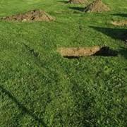 Подготовка посадочных ям фото