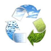 Консультирование по вопросам экологии