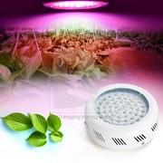 Профессиональная светодиодная гидропонная фитопанель 270w фото