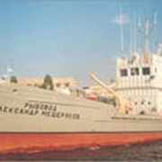 Транспортно-живорыбное патрульное судно фото