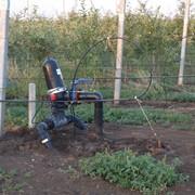 Системы полива садов фото