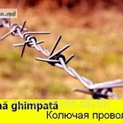 Проволока колючая,SIRMA GHIMPATA IN MOLDOVA фото