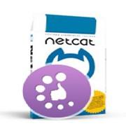 Создание сайта на базе NetCat фото