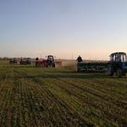 Услуги по обработке почвы фото