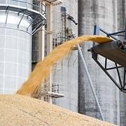 Железнодорожная логистика по перевозке зерна в вагонах-зерновозах по Украине, странам СНГ и Европе фото