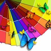 Краски серии Pantone фото