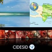 Практический курс имплантологии в Доминиканской республике. На реальных пациентах. фото