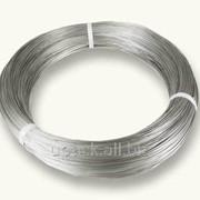 Проволока никель-хромовая d 0.8 фото
