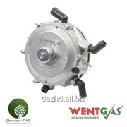 Редуктор Wentgas VR02 (вакуумный) (90 kw, 130 НР) фото