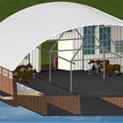 Строительство животноводческих ферм фото