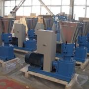 Гранулятор кормов (мини пресс-гранулятор) фото