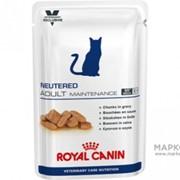 Adult Maintenance Cat Royal Canin корм, До 7 лет, Пауч, 0,100*12кг фото