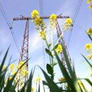 Разработка программы производственного экологического контроля (ПЭК) фото