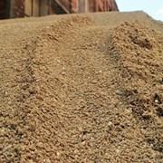 Карьерный песок 0-5 с доставкой в Абинск фото