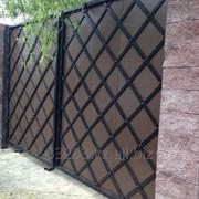 Ворота строгие фото