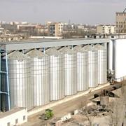 Услуги по хранению зерновых культур Копанским хлебоприемным предприятием фото