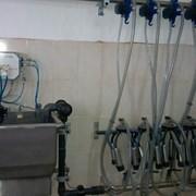 Установка доильная в молокопровод на 100(200) голов фото