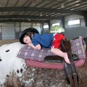 Лечебная верховая езда для детей инвалидов Житомир фото
