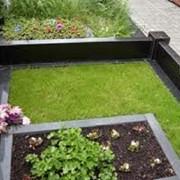 Устройство зеленого газона на месте захоронения путем посева семян газонных трав фото