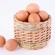 Яйца куринные от фермера фото