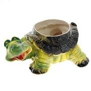 Цветной горшок Черепаха цветное Кашпо 2,5л. 15см фото