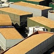 Экспорт любых видов сельскохозяйственной продукции фото